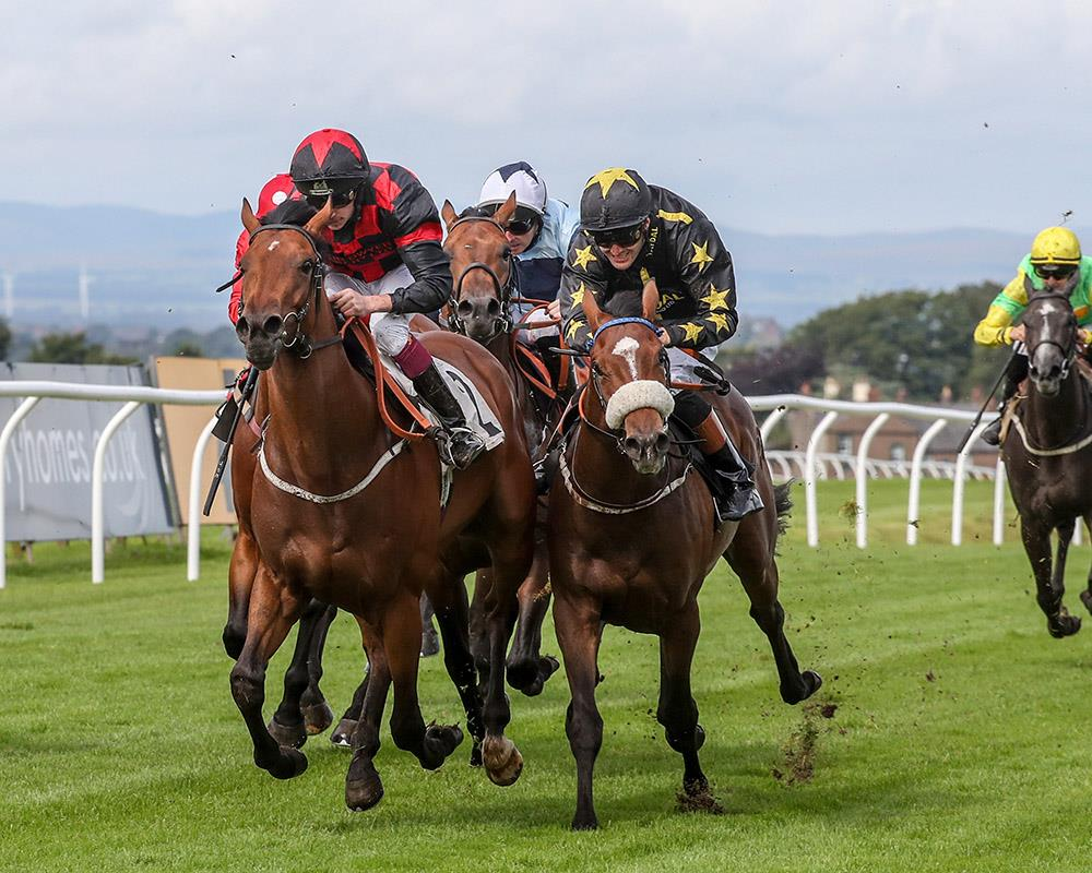 CANFORD'S JOY wins at Carlisle on only his second start