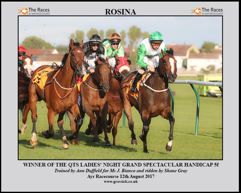Two wins for ROSINA, the first of which came at Ayr