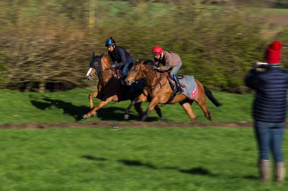 Two year old fillies working upsides - Miss Sabina and You Little Beauty