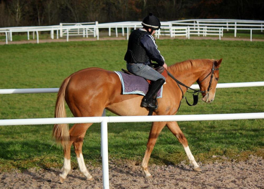 For Sale - Equiano x Wedding Dream