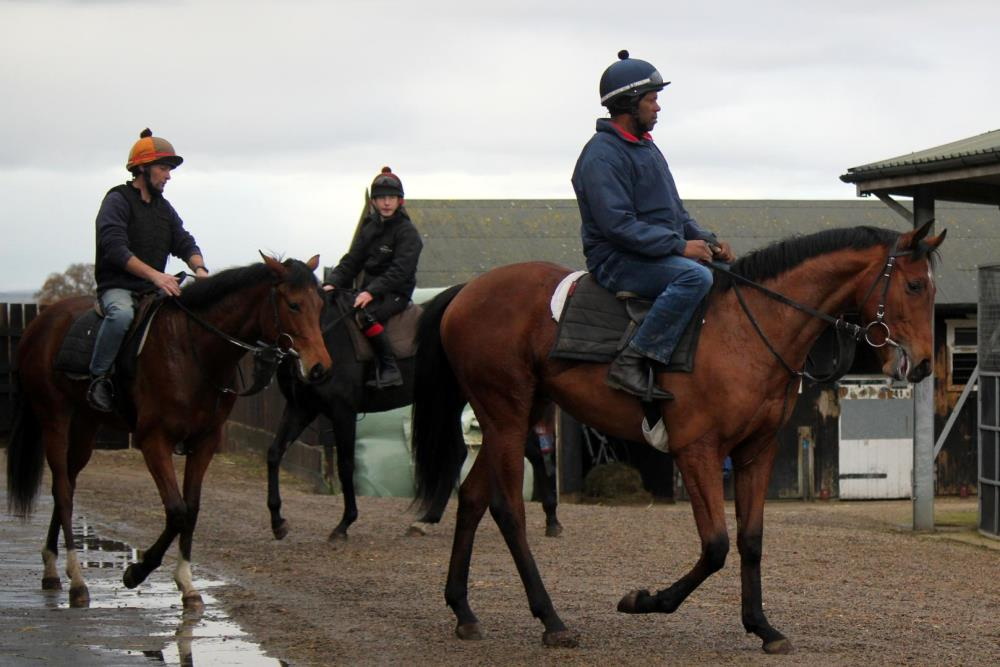 Yearling colt by Power ridden by James